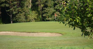 Loughgall Golf Club competitions update of previous two weeks….