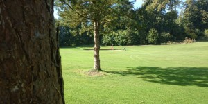 Loughgall Golf Club, update of recent competitions….