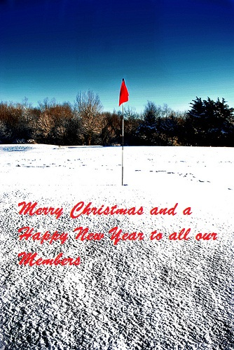 MERRY CHRISTMAS AND A HAPPY NEW YEAR TO ALL