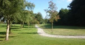Loughgall Golf Club, update of the weeks events….