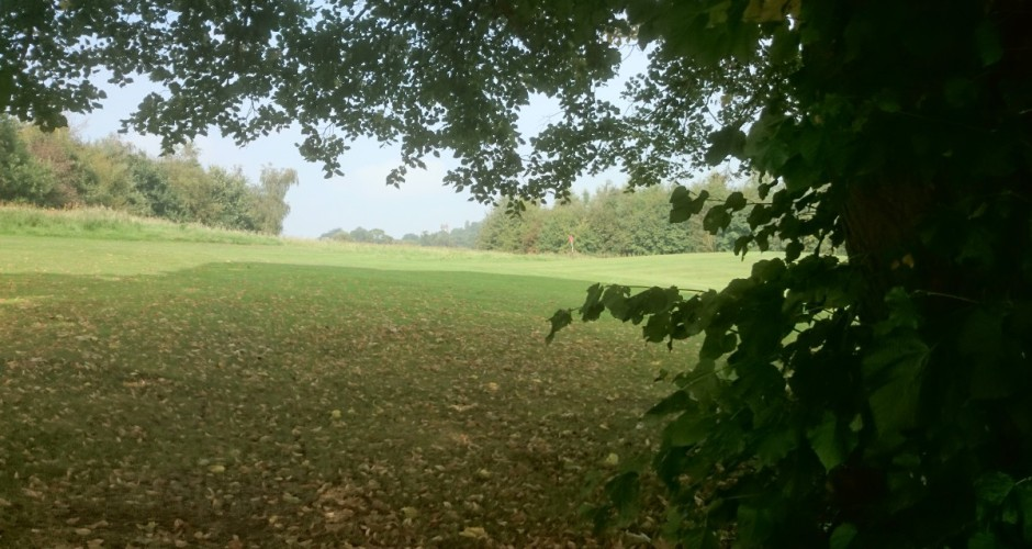 THIS WEEKS COMPETITION – Sunday to Friday – off green