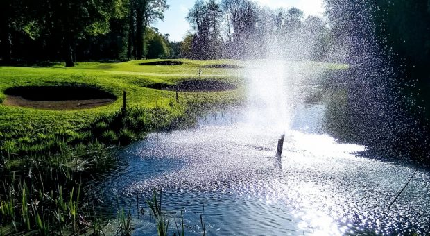 This weeks competition – PGA Qualifier – Stableford – green tees